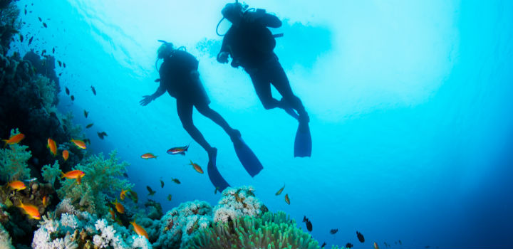 dykkertur